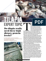 Do tilapia need these high protein levels?