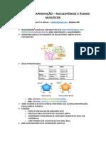 RESUMÃO DA APROVAÇÃO - NUCLEOTÍDEOS.pdf
