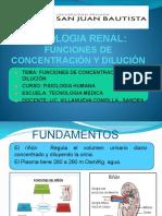 FISIO CONCENTRA Y DILU2017.pptx.pdf