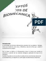 Conceptos Básicos de Biomecanica