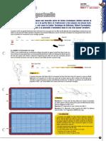 ffb-technique-libre.pdf