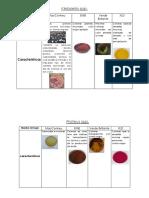 Caracteristicas Coloniales Klebsiella & Proteus