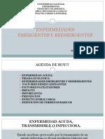 6. ENFERMEDADES Emerg y Reemerg