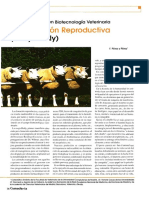 29 - Clonacion Reproductiva (Oveja Dolly).pdf