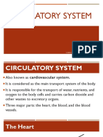 Circulatory System Sci 6