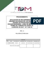 Plan de Trabajo Tmm - Proyecto Chilota