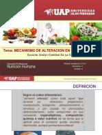 3. Mecanismo de Alteracion en Alimentos