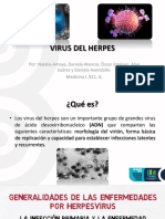 CITOMEGALOVIRUS VHH-5
