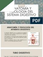 ANATOMÍA Y FISIOLOGÍA DEL APARATO DIGESTIVO-1.pptx