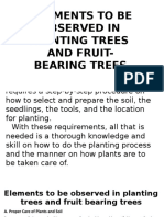 Elements to Be Observed in Planting Trees