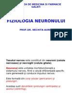 fiziologie - Neuronul