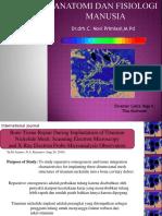 Anatomi dan Fisiologi Manusia PPT