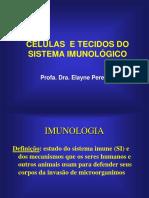Mês 02 Dia 25 - Células Do Sistema Imunológico (3)