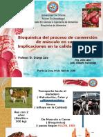 Bioquímica Conversión Músculo en Carne UDO-Ve