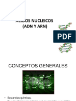 dx molecular