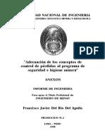 Adecuación de Los Conceptos de Control de Perdidas Al Programa de Seguridad e Higiene Minera