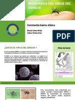 Bioquimica Del Dengue