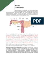 1 Resumo Histologia Uc3-1