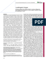 Stress Adaptation in a Pathogenic Fungus