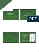 2)CEREALES Y SEUDOCEREALES- NUEVAS IMAGENES.pdf