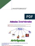 APUNTE_1_LOS_INVERTEBRADOS_PPt 2° básico