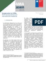 Panorama Casen N3 Inmigrantes Analisis Por Macrozonas