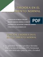 13. Funcion Tiroidea en El Envejecimiento Normal