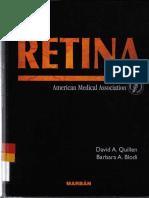 Retina (libro).pdf