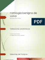 Patologia benigna de vulva