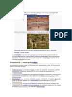 12 Principios de La Estratigrafía