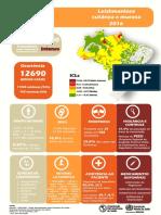 Info Bra Portugues 2016