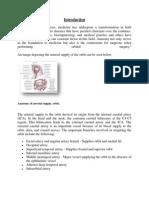 Arterial Supply, Orbit