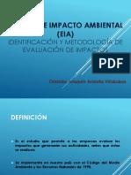 EIA en Taller Evaluacion de Proyectos.pptx