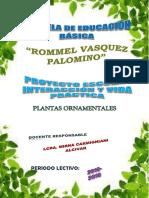 Proyecto Escolar Plantas Medicinales Cerro de Oro (1)