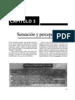 Capítulo 3 Sensación y Percepción