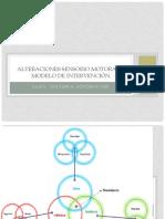 Alteraciones Sensoriomotoras y Modelo de Intervencion Kinesica (1)