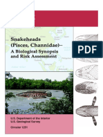 SNAKEHEADS (Pisces, Channidae)-A Biological Synopsis and Risk Assessment.pdf