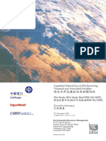 EIA LNG _Executive Summary.pdf