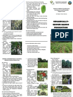 MangoProduction.pdf