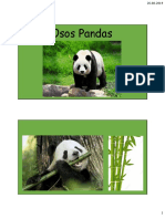 Presentación Oso Panda