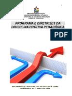 Diretrizes de Prática Pedagógica Ano 2009