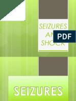 Seizures and Shock