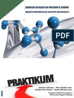 lks-analitik-pdf.pdf