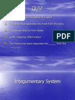 MEDL the Integumentary System (2)