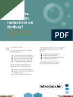 REvolucion Bolivia