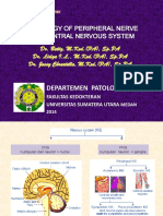 BMS1 - K11 - Pathology of Peripheral Nerve and Central Nervous System.ppt