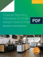 FRFforSMEs Illustrative Financial Statements