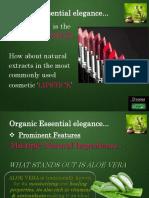 Brand Management_herbal lipstick.pptx