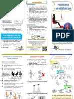 Folheto de Posturas Ergonómicas.