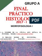 Láminas de histología